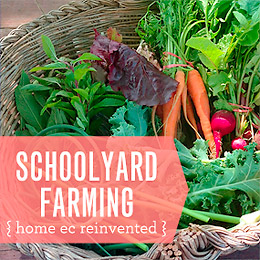 Schoolyard Farming: The HSPS Youth Farm