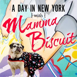 Senior Spotlight: A Day In New York With Mamma Biscuit