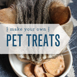 Make It! Pet Treats
