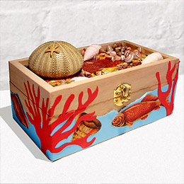 Tide Pool Treasure Box