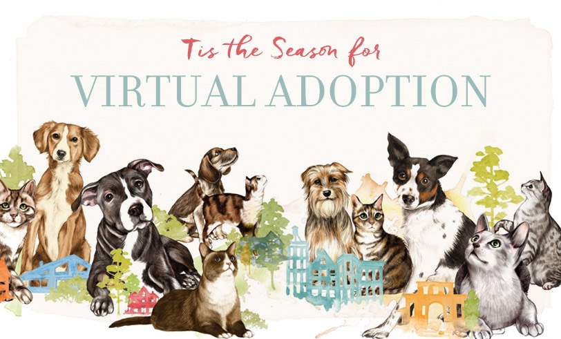 'Tis The Season For Virtual Adoption