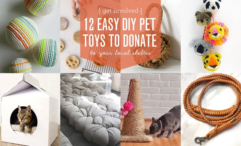 12 Easy Toys To Donate To Your Local Shelter