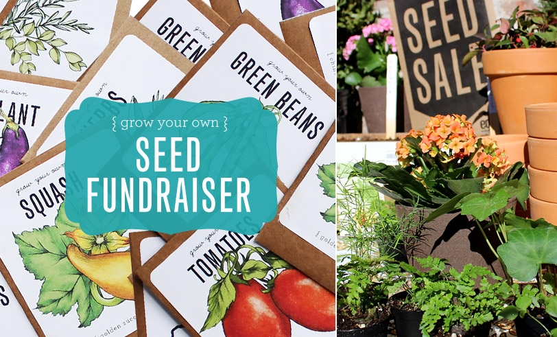 Make Nice Mission: Seed Selling Fundraiser
