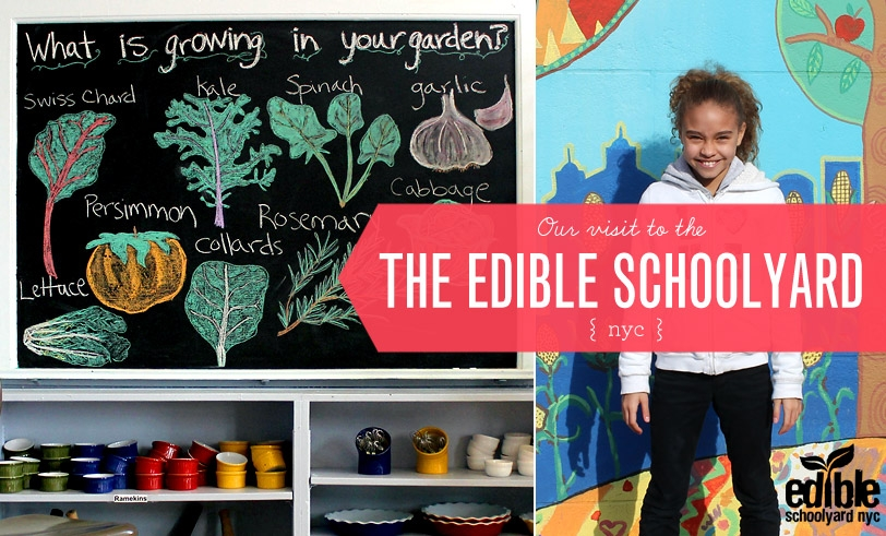 The Edible Schoolyard NYC